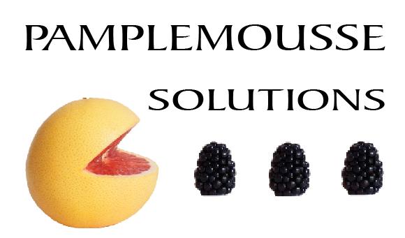 Pamplemousse Solutions : Repulpez vos fichiers et dynamisez votre relation-client.